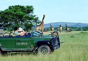Lalibela Game Reserve near Grahamstown in the Eastern Cape