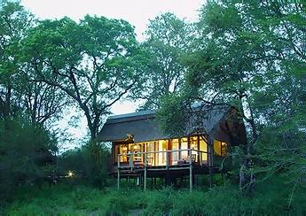 Kruger national Park South Africa accommodation and safari