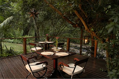 Serenity Forest Lodge Malelane accommodation South Africa